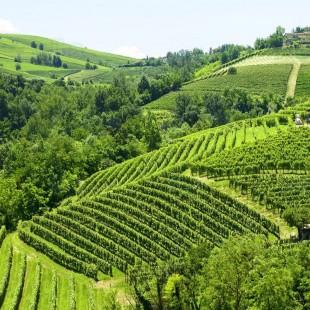Monte Stregone